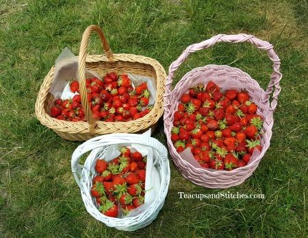 strawberrybasket.jpg