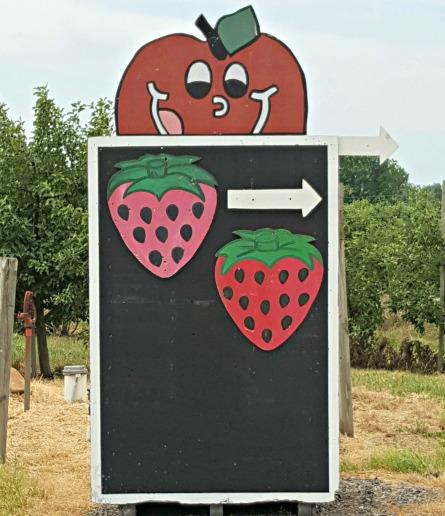 strawberrysign.jpg